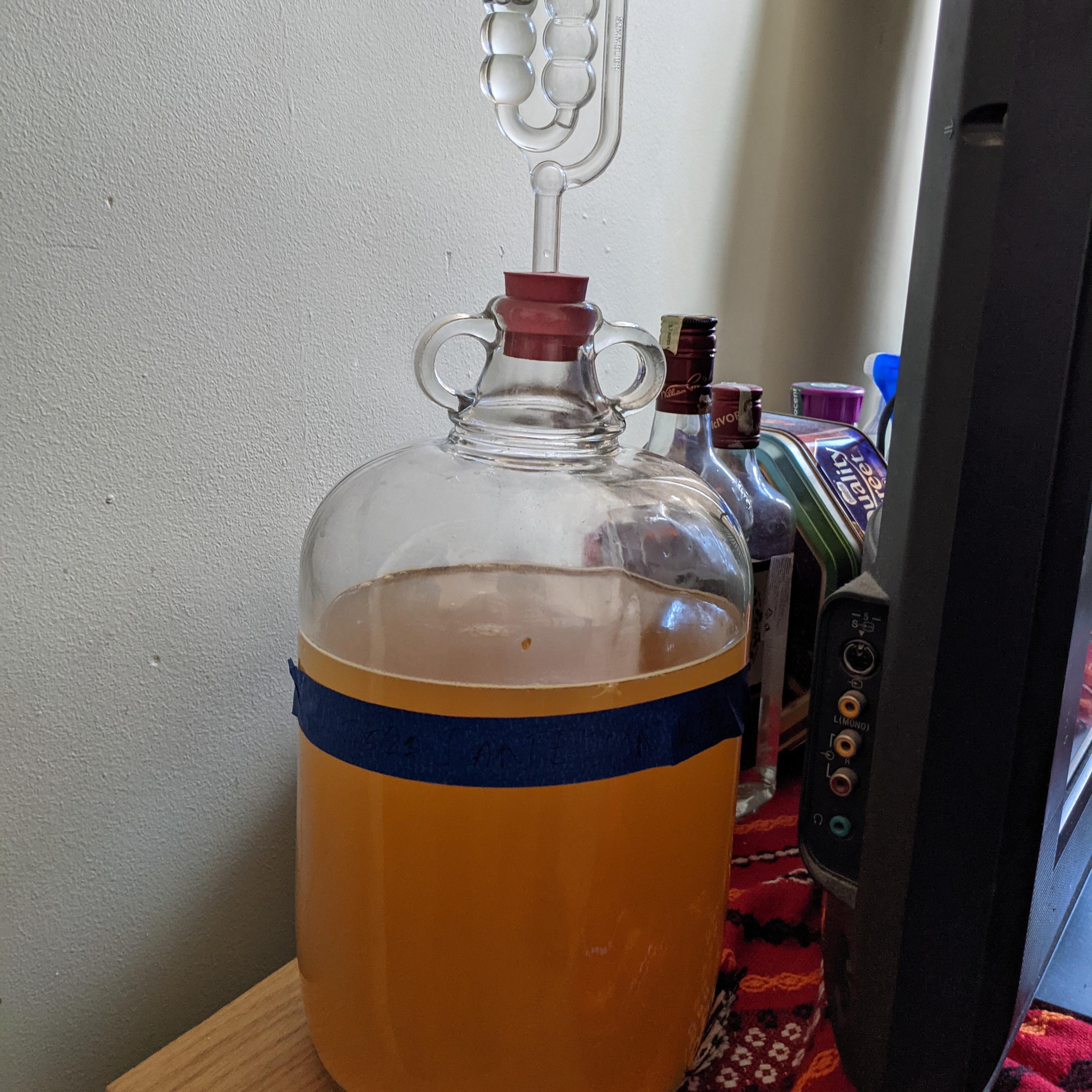 Demijohn of wine left to ferment